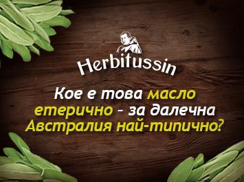 Етеричните масла – ароматна сила от природната градина!