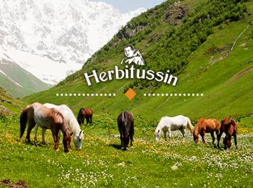Запознайте се с 10 факта за алпийската природа в Швейцария