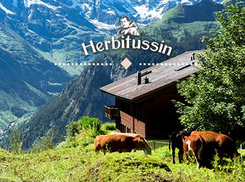 Виртуална разходка из 3-те най-живописни швейцарски селца!
