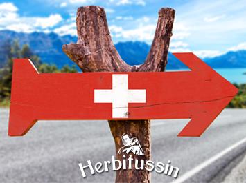 3 автентични предложения за летни швейцарски забавления